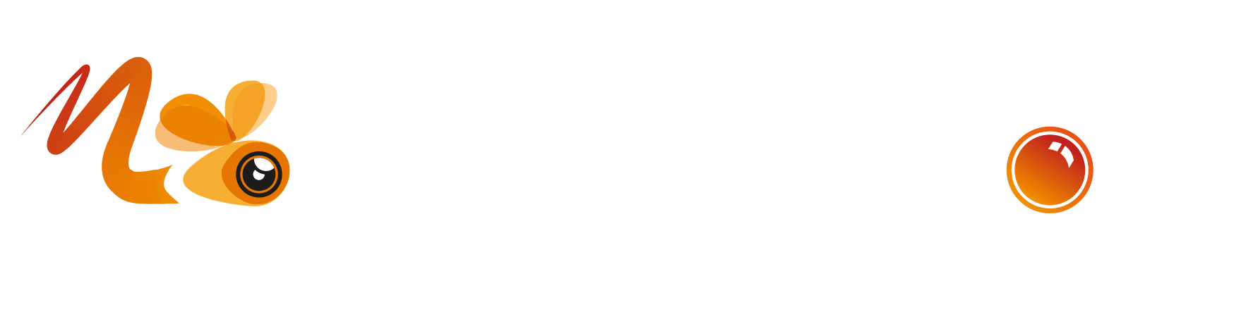 Moviedron